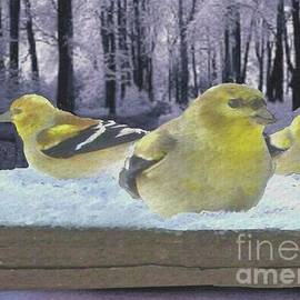 Janette Boyd - Three Goldfinches in Winter