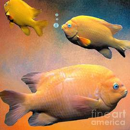 Janette Boyd - Three Tropical Goldfish