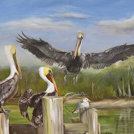 Phyllis Beiser - Three Pelicans And A Seagull