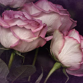 Richard Cummings - Three Roses