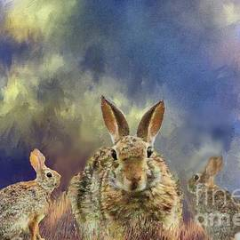 Janette Boyd - Three Scared Lagomorphs