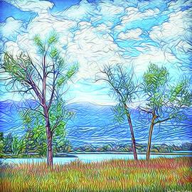 Joel Bruce Wallach - Three Trees - Mountain Lake In Boulder County Colorado