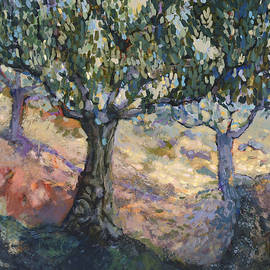 Through Ancient Olives - Jen Norton