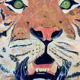 Anne Sands - Tiger Alert