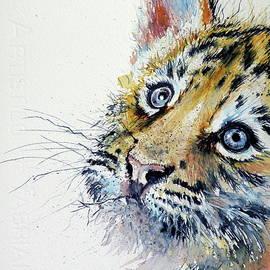 Tiger cub - Kovacs Anna Brigitta