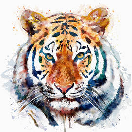 Marian Voicu - Tiger Head watercolor