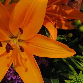Ann Horn - Tiger Lily Bouquet
