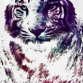 Catherine Lott - Tiger Pop Art