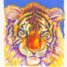 Stephen Anderson - Tiger