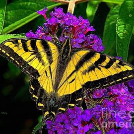 Patrick Witz - Tiger Swallowtail Butterfly