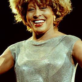 Gary Gingrich Galleries - Tina Turner-0455