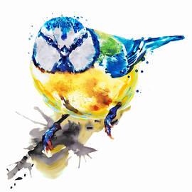 Marian Voicu - Tiny Colorful Bird