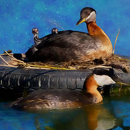 Ericamaxine Price - Tire Nest for Red-Necked Grebes