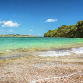 Joan Carroll - Tiritiri Matangi New Zealand Shoreline