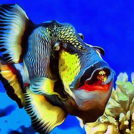 Sergey Lukashin - Titan triggerfish