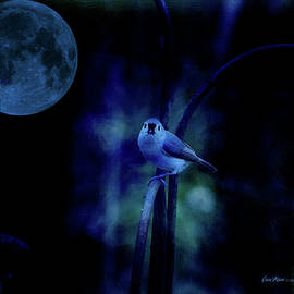 EricaMaxine  Price - Titmouse in the Moonlight