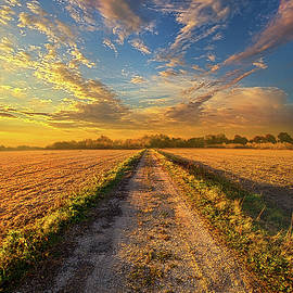 Phil Koch - To Show Us The Way