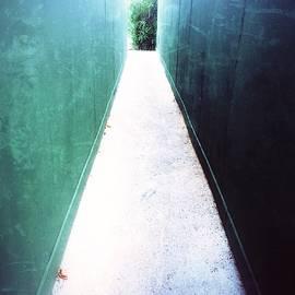 Julian Darcy - To the garden