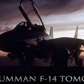 Tomcat Sunset - Peter Chilelli