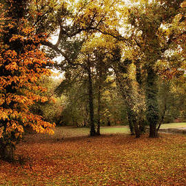 Tones of Autumn - Jessica Jenney