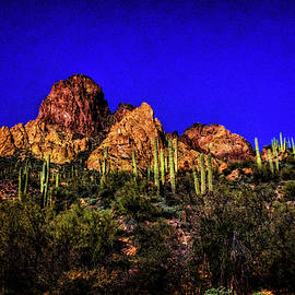 Roger Passman - Tonto National Forest