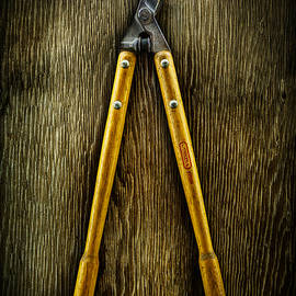 Tools On Wood 34 - YoPedro