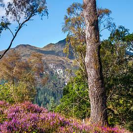 Jenny Rainbow - Top of the World. Scotland