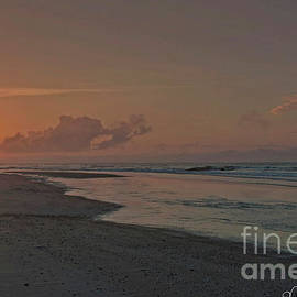 Mike Griffiths - Topsail Morning