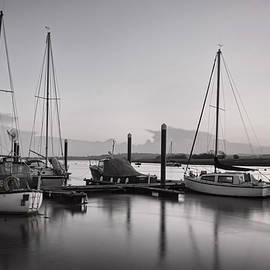 P Hemington - Topsham boats at dusk