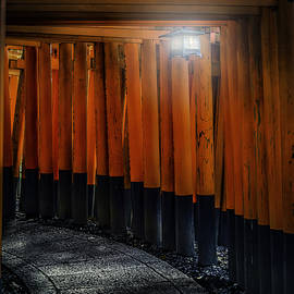 Anya Terebenina-Taggart - Torii Gates Of A Fushimi Inari Shrine