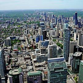 Debbie Oppermann - Toronto Ontario Scrapers
