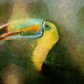 Akos Horvath - Close up of colorful keel-billed toucan bird.Home Decor Wall Art Digital Painting by Akos Horvath.