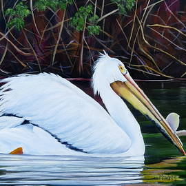 Marilyn McNish - Touring Pelican