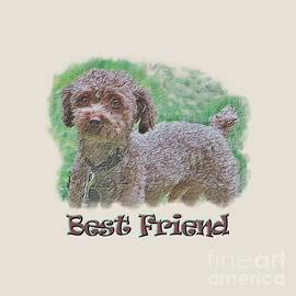 Shelly Weingart - Toy Poodle Best Friend Transparent Design