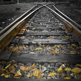 Angelia Bella Photography - Tracks