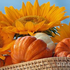 Luv Photography - Tradition Seasonal Decoration