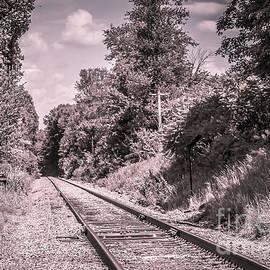 Claudia Mottram - Train tracks