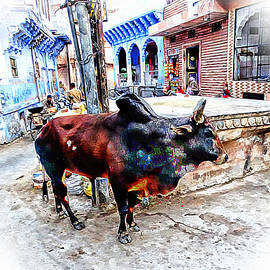 Sue Jacobi - Travel Bull in Exotic Blue City Streets India Rajasthan 1b