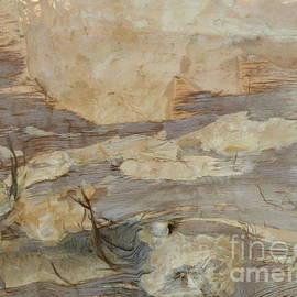 Nili Tochner - Tree barks no.2
