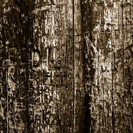 Fei A - Tree Culture Beige