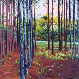 David Randall - Tree Farm