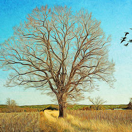 Cathy Kovarik - Tree In Golden Field