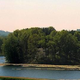 R A W M   - Tree Island