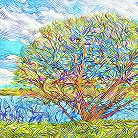 Joel Bruce Wallach - Tree Lake Momentum - Boulder County Colorado