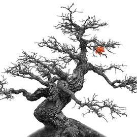 Manfred Lutzius - Tree
