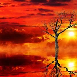 Gabriella Weninger - David - Tree of destruction