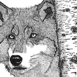 Jessica Coulter - Tree Wolf