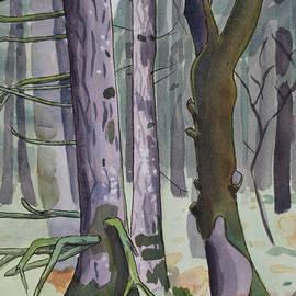 Alexandra Schaefers - Trees by the Mulkey Ridge Trail