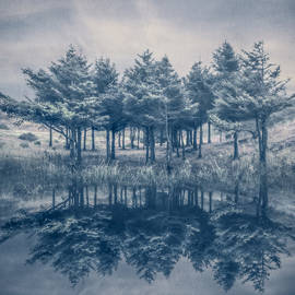 Debra and Dave Vanderlaan - Trees in Blue