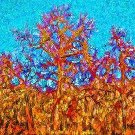 Joel Bruce Wallach - Trees Under Shimmering Sky - Boulder County Colorado